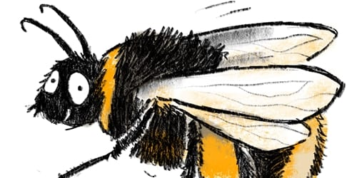 Great British Bee Weekend