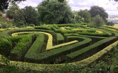 Gardeners' Blog – August
