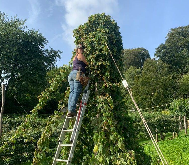 Gardener's Blog – September